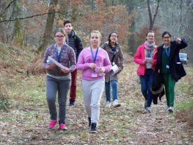 Orientation race in the Landes Forest